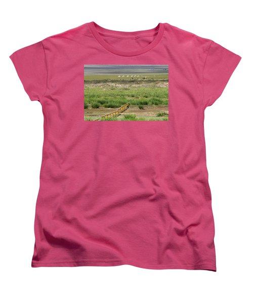 Women's T-Shirt (Standard Cut) featuring the photograph Greenery In Desert, Gobi, 2016 by Hitendra SINKAR