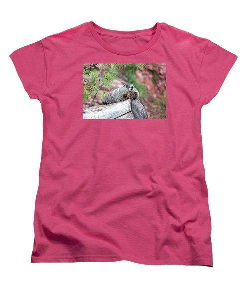Groundhog On A Log Women's T-Shirt (Standard Cut) by Jess Kraft