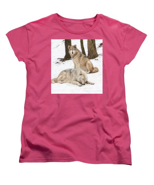 Guarding His Companion Women's T-Shirt (Standard Cut) by Gary Slawsky
