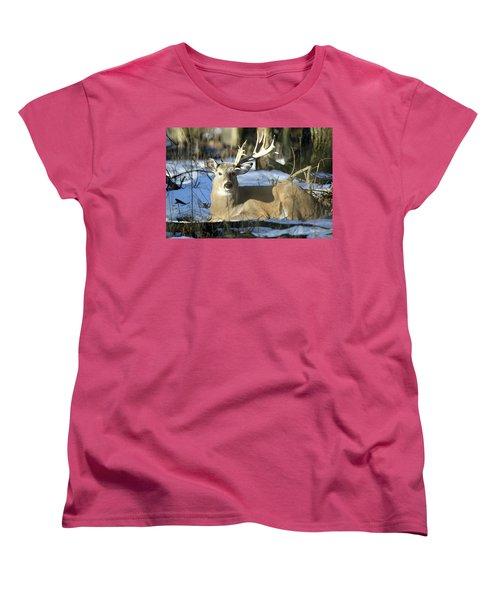 Half A Monster Women's T-Shirt (Standard Cut) by Brook Burling