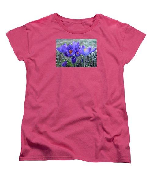 Harbinger Of Spring Women's T-Shirt (Standard Cut) by Barbara McDevitt