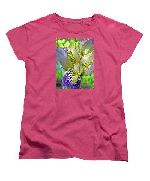 Harmony 4 Women's T-Shirt (Standard Cut) by Lynda Lehmann