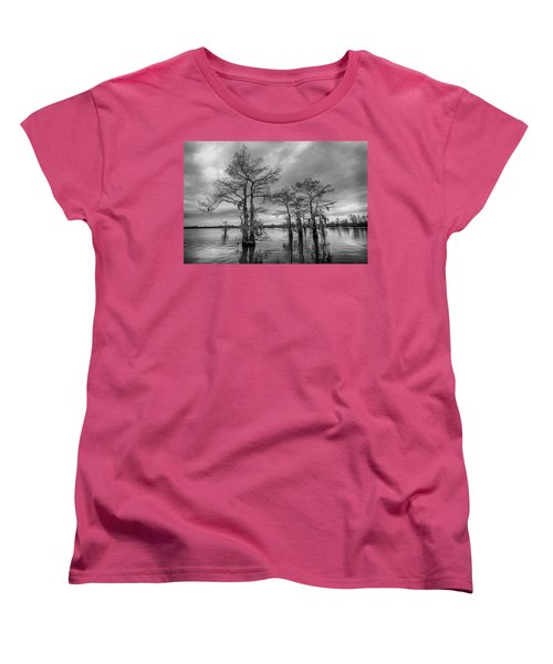 Henderson Swamp Wetplate Women's T-Shirt (Standard Cut) by Andy Crawford