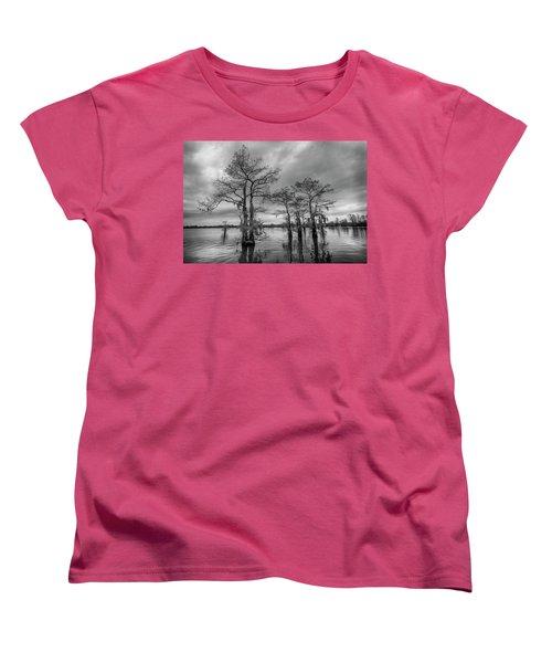 Henderson Swamp Wetplate Women's T-Shirt (Standard Cut)