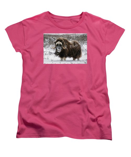 Here's Looking At You Women's T-Shirt (Standard Cut)