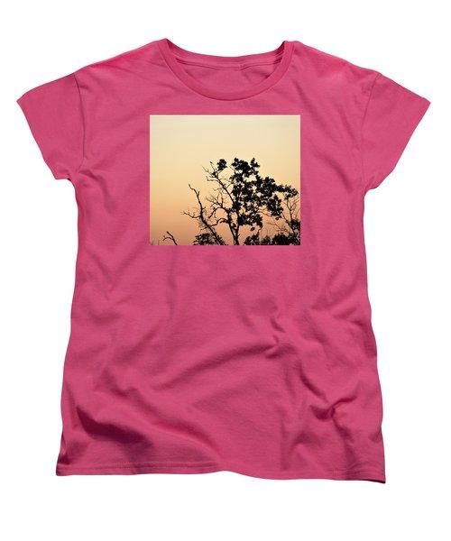 Hush Little Baby Women's T-Shirt (Standard Cut) by John Glass