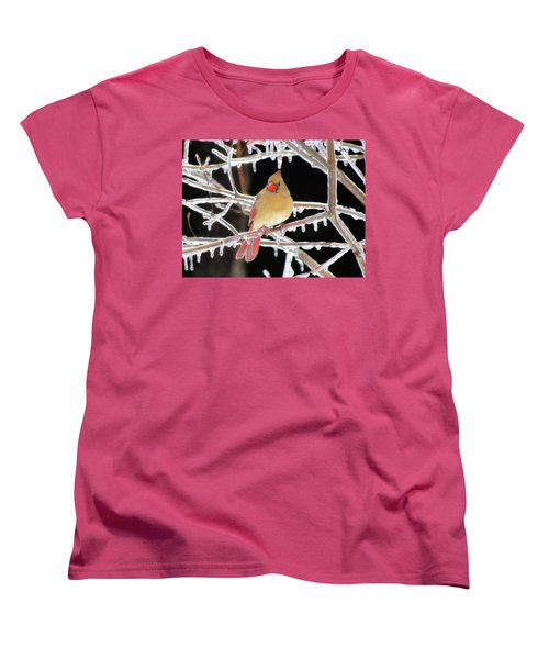 Ice Princess Women's T-Shirt (Standard Cut) by MTBobbins Photography