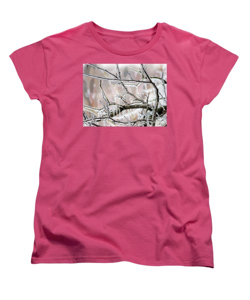 Ice Storm Ice Women's T-Shirt (Standard Cut) by Craig Walters