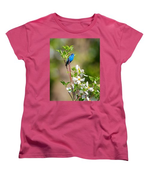 Indigo Bunting In Flowering Dogwood Women's T-Shirt (Standard Cut) by Bill Wakeley