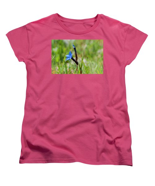 Irish Gentians Women's T-Shirt (Standard Cut) by Rob Hemphill