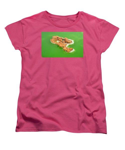 Dallol #4 Women's T-Shirt (Standard Cut)