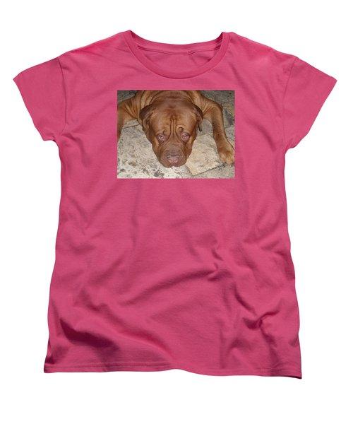 JAX Women's T-Shirt (Standard Cut) by Val Oconnor