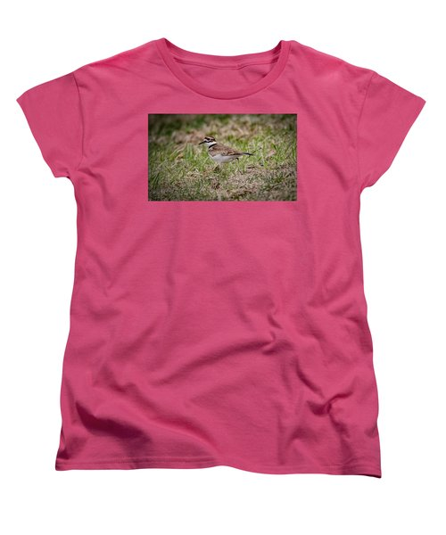 Killdeer Women's T-Shirt (Standard Cut) by Ray Congrove