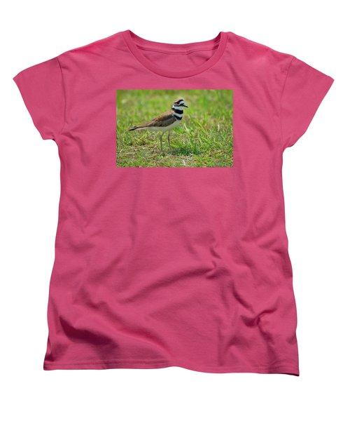 Killdeer Women's T-Shirt (Standard Cut) by Rich Leighton