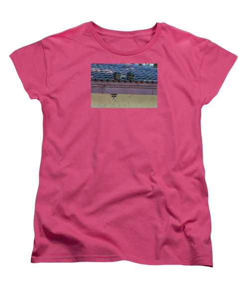 Kits On The Roof Women's T-Shirt (Standard Cut) by Dorothy Cunningham