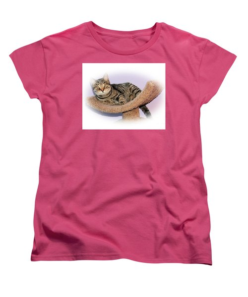 Women's T-Shirt (Standard Cut) featuring the photograph Kitty Perch by Debbie Stahre