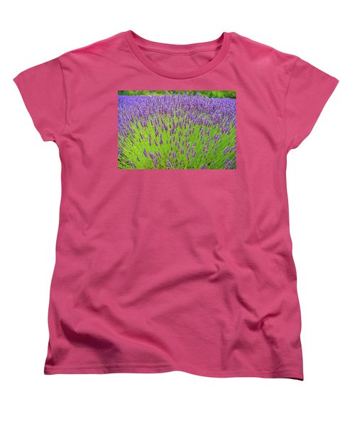 Lavender Gathering Women's T-Shirt (Standard Cut) by Ken Stanback