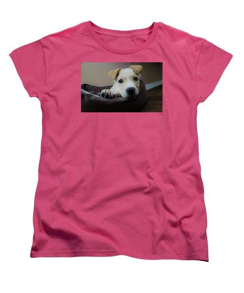 Lazy Day Women's T-Shirt (Standard Cut) by Aaron Martens