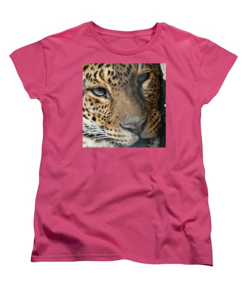 Women's T-Shirt (Standard Cut) featuring the photograph Leopard Face by Richard Bryce and Family