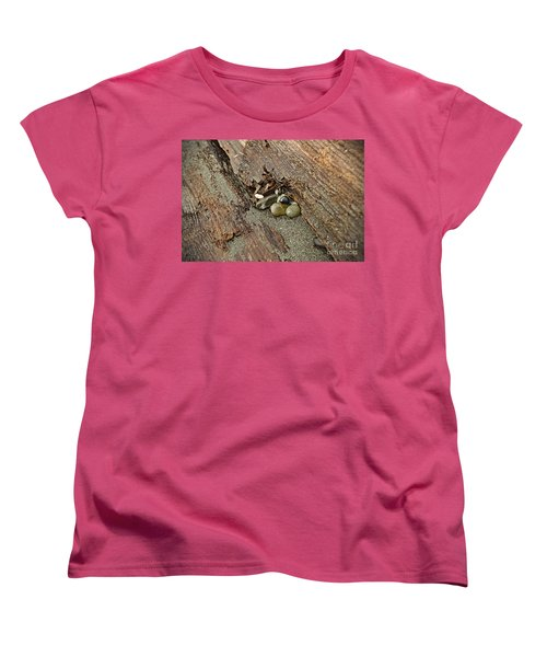 Women's T-Shirt (Standard Cut) featuring the photograph Little Rocks by Cendrine Marrouat