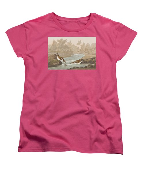 Little Sandpiper Women's T-Shirt (Standard Cut) by John James Audubon