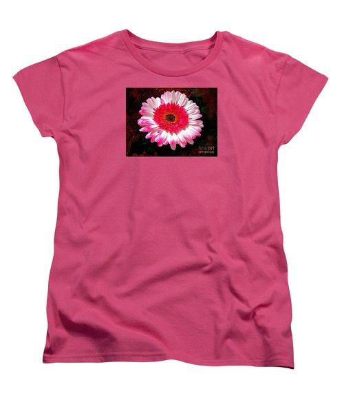 Lollipop Gerber Daisy Women's T-Shirt (Standard Cut) by Patricia L Davidson