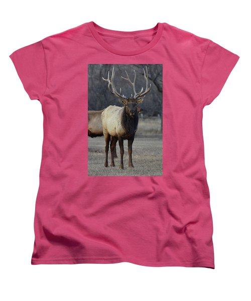 Women's T-Shirt (Standard Cut) featuring the photograph Lone Bull by Billie Colson