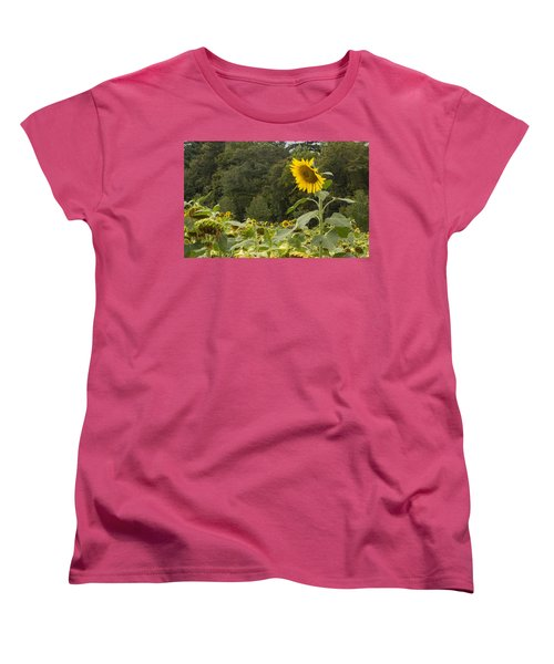 Women's T-Shirt (Standard Cut) featuring the photograph Lone Wolf by Arlene Carmel