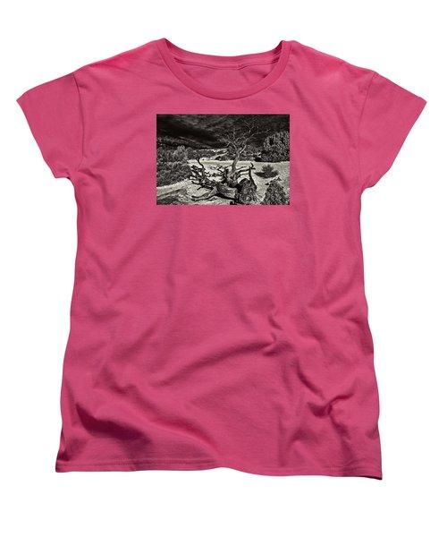 Lonely Tree #4  Women's T-Shirt (Standard Cut) by Alex Galkin