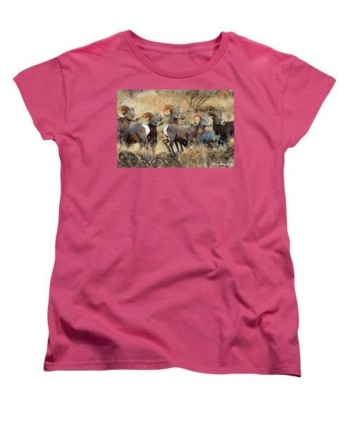 Look At That Women's T-Shirt (Standard Cut) by Steve Warnstaff