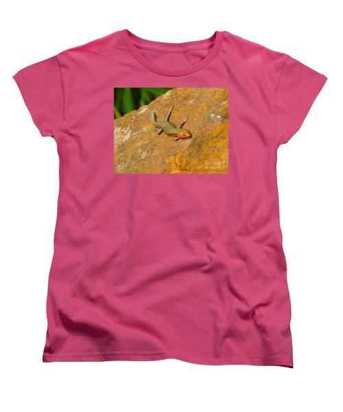 Lounging Lizard Women's T-Shirt (Standard Cut)