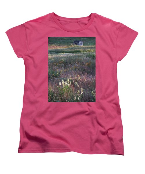 Lupine Women's T-Shirt (Standard Cut) by Laurie Stewart