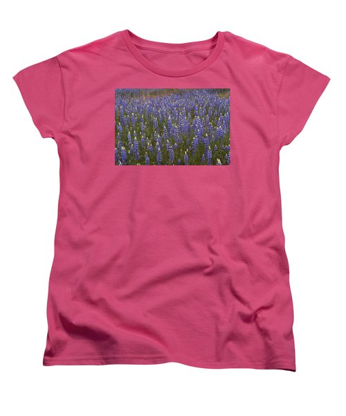 Lupines Women's T-Shirt (Standard Cut) by Doug Herr