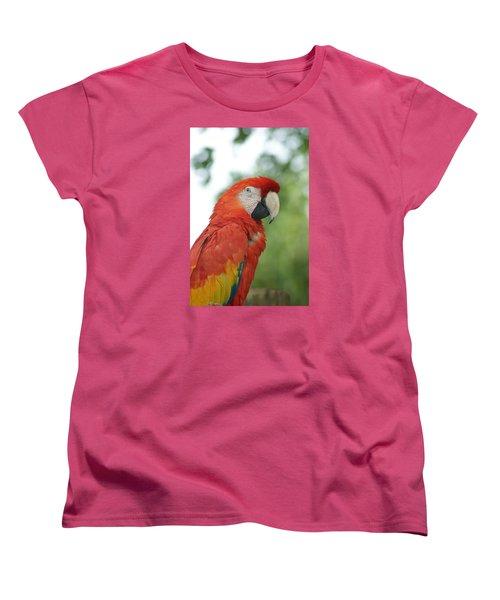 Women's T-Shirt (Standard Cut) featuring the photograph Macraw by Heidi Poulin