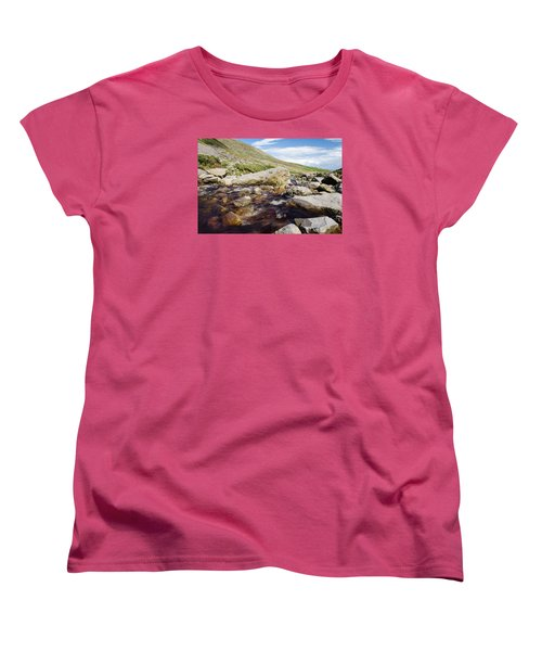 Mahon Falls And River Women's T-Shirt (Standard Cut) by Martina Fagan