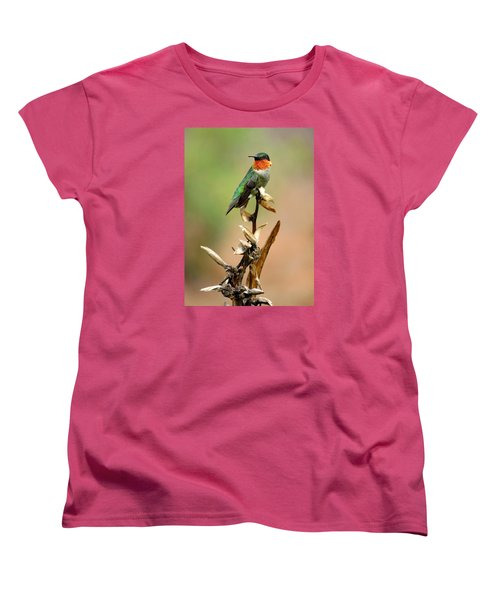 Women's T-Shirt (Standard Cut) featuring the photograph Male Ruby Throat Hummingbird by Phyllis Beiser