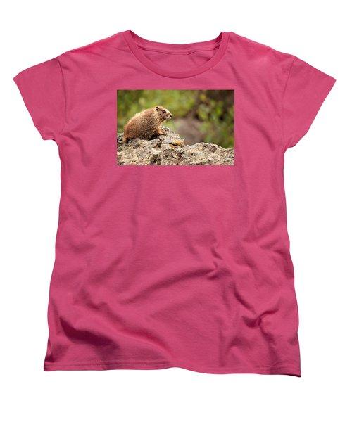 Marmot Women's T-Shirt (Standard Cut) by Lana Trussell