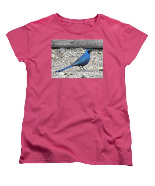 Women's T-Shirt (Standard Cut) featuring the photograph Meve's Starling by Betty-Anne McDonald