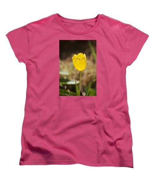 Morning Optimism Women's T-Shirt (Standard Cut) by Morris  McClung