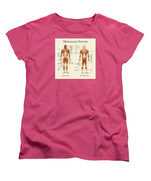 Women's T-Shirt (Standard Cut) featuring the photograph Muscular System by Gina Dsgn
