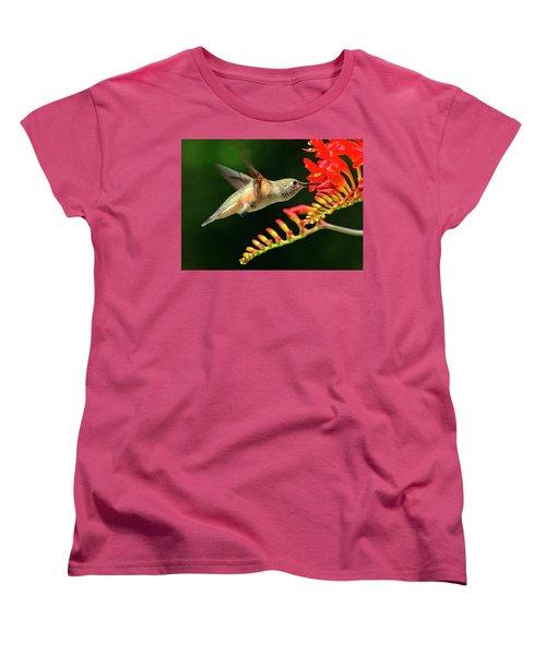 Nectar Time Women's T-Shirt (Standard Cut) by Sheldon Bilsker