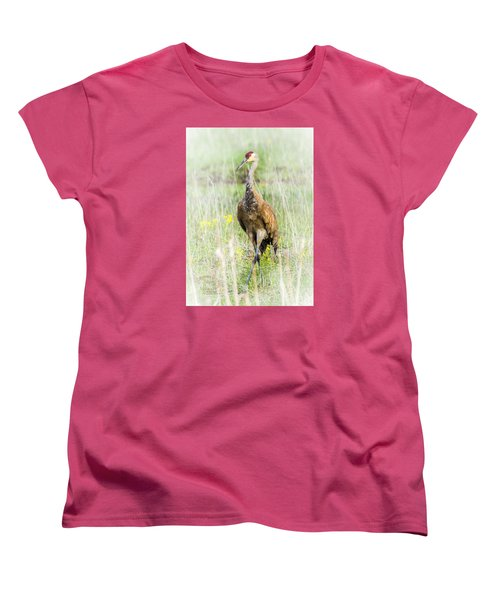 Women's T-Shirt (Standard Cut) featuring the photograph Nesting Sandhill Crane by Daniel Hebard