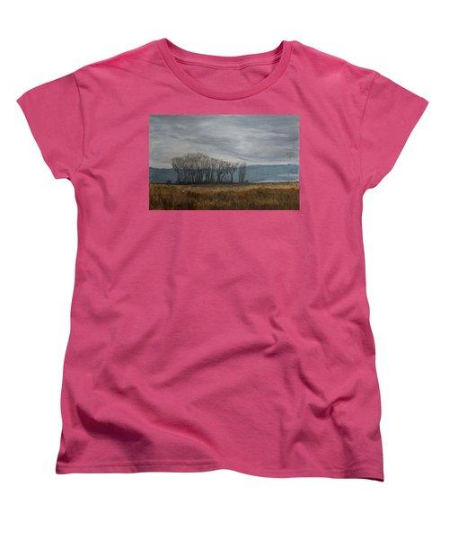 New Buffalo Marsh Women's T-Shirt (Standard Cut) by John Hansen