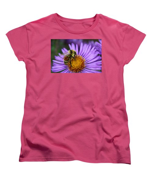 New England Aster And Bee Women's T-Shirt (Standard Cut) by Steve Augustin
