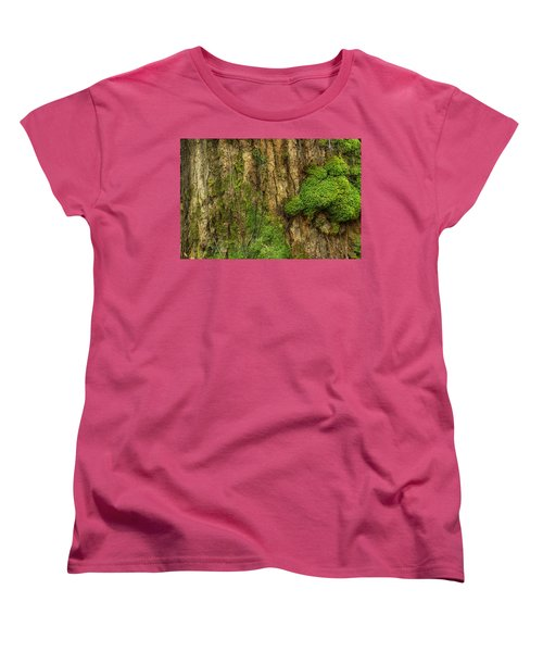 Women's T-Shirt (Standard Cut) featuring the photograph North Side Of The Tree by Mike Eingle