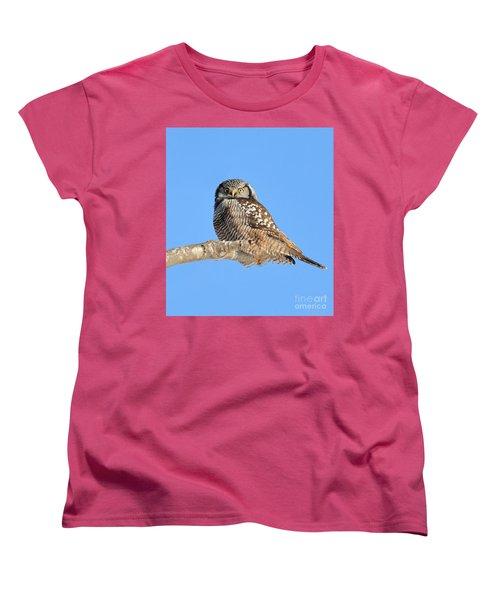 Northern Hawk-owl On Limb Women's T-Shirt (Standard Cut) by Debbie Stahre
