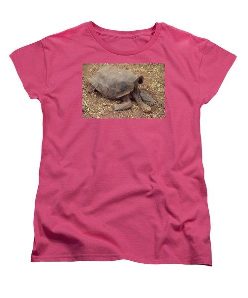 Old Tortoise Women's T-Shirt (Standard Cut) by Will Burlingham