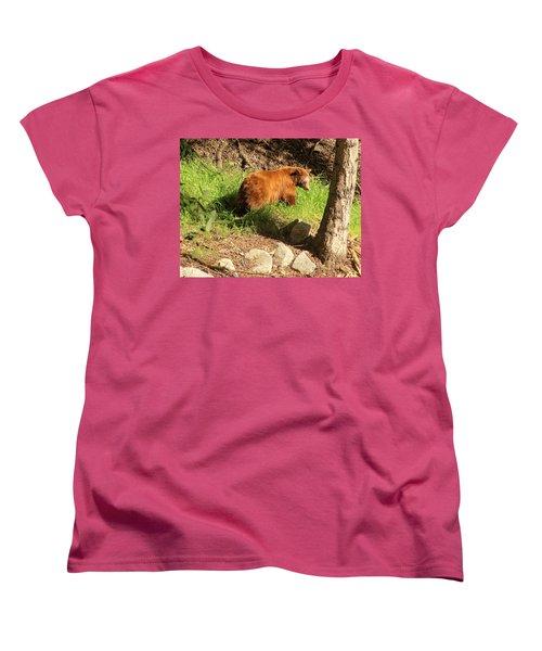 On Monrovia Trail Women's T-Shirt (Standard Cut) by Viktor Savchenko