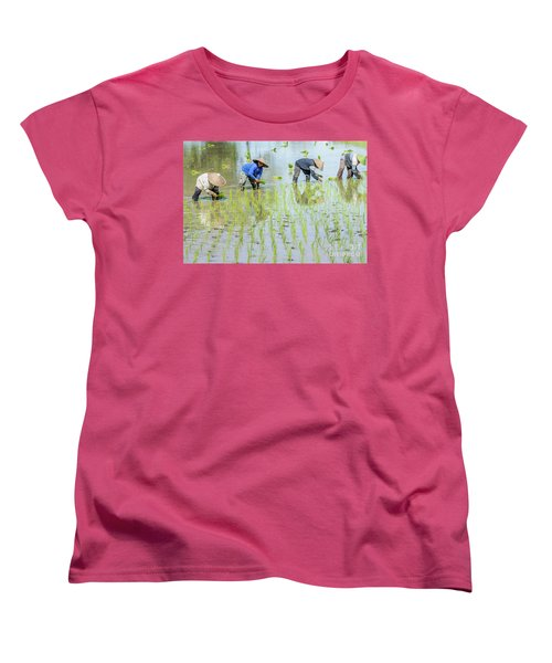 Paddy Field 1 Women's T-Shirt (Standard Cut) by Werner Padarin