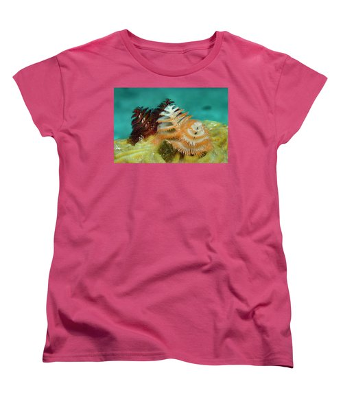 Women's T-Shirt (Standard Cut) featuring the photograph Pair Of Christmas Tree Worms by Jean Noren